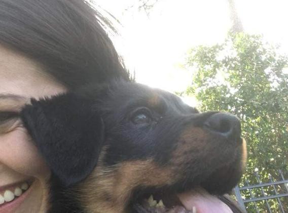 Zirk and Lauren 10 weeks old.jpg