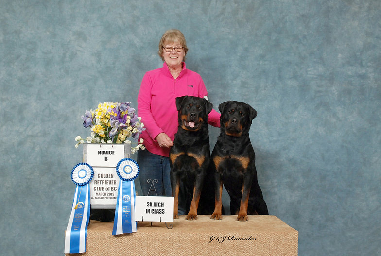 Emmy and Ali Novice B debut March 2019 l