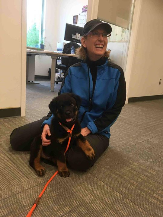 Love these kinds of updates! From Tracey Rodd  and nope she doesn't look happy with him at all lol! _Took Gordon to my office today and he w