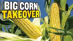 America's DANGEROUS Reliance on Corn