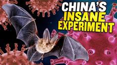 Uncovered: China's Plan to LEAK Coronaviruses into the Wild