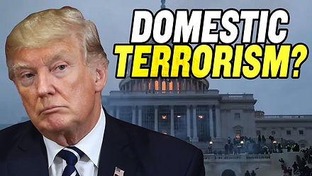 Capitol Riot Aftermath: Domestic Terrorism and Impeachment?