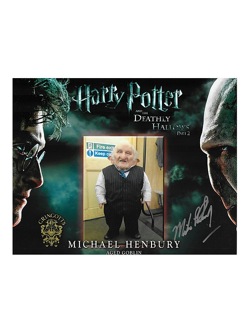 10x8 Harry Potter Print Signed by Michael Henbury