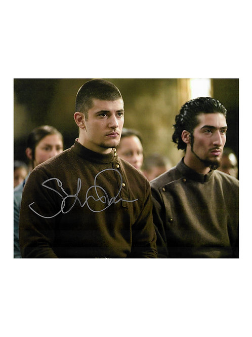 10x8 Harry Potter Print Signed by Stanislav Ianevski