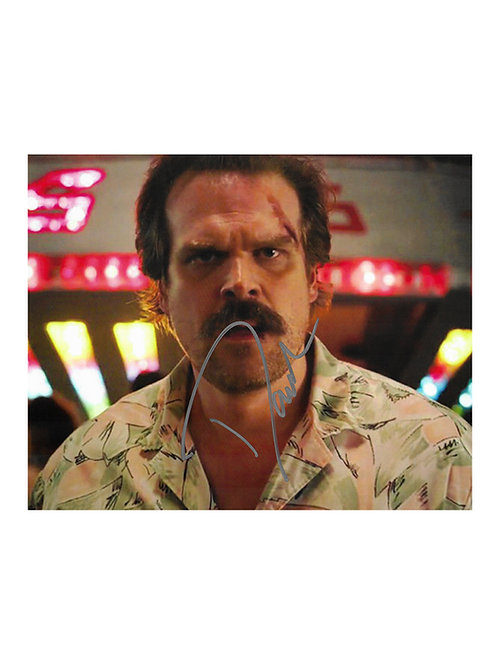 10x8 Stranger Things Print Signed by David Harbour