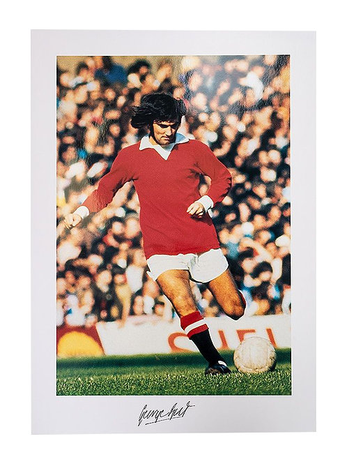 16.5x23 Print Signed By George Best