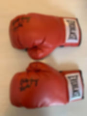 burt-gloves.jpg