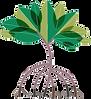 PinClipart.com_tropical-clip-art_1245210
