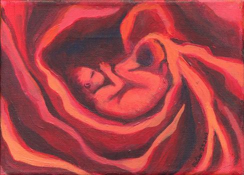 Des roses et des choux…