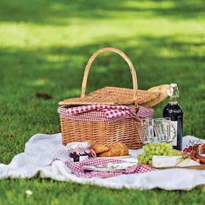 Summer picnic - Pique-nique de l'été