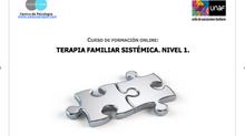 Curso de formación online: Terapia familiar sistémica. Nivel 1 (7ª Ed.)