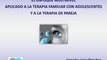 "Seminario online sobre ""El enfoque multinivel aplicado a la terapia familiar con adolescentes y"