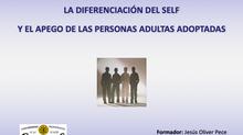 """Curso sobre """"La diferenciación del self y el apego de las personas adultas adoptadas"""""""