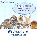 小動物バナー四角(保険料変わりません).png