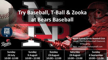 Try Baseball at Bears