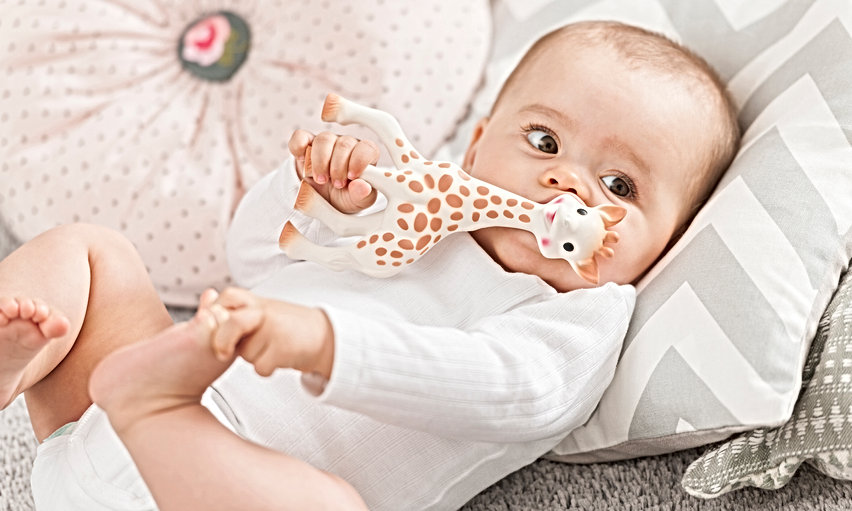 Sophie la girafe and baby 2017 - 2.jpg
