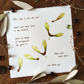 Cotton Lyrics Quote