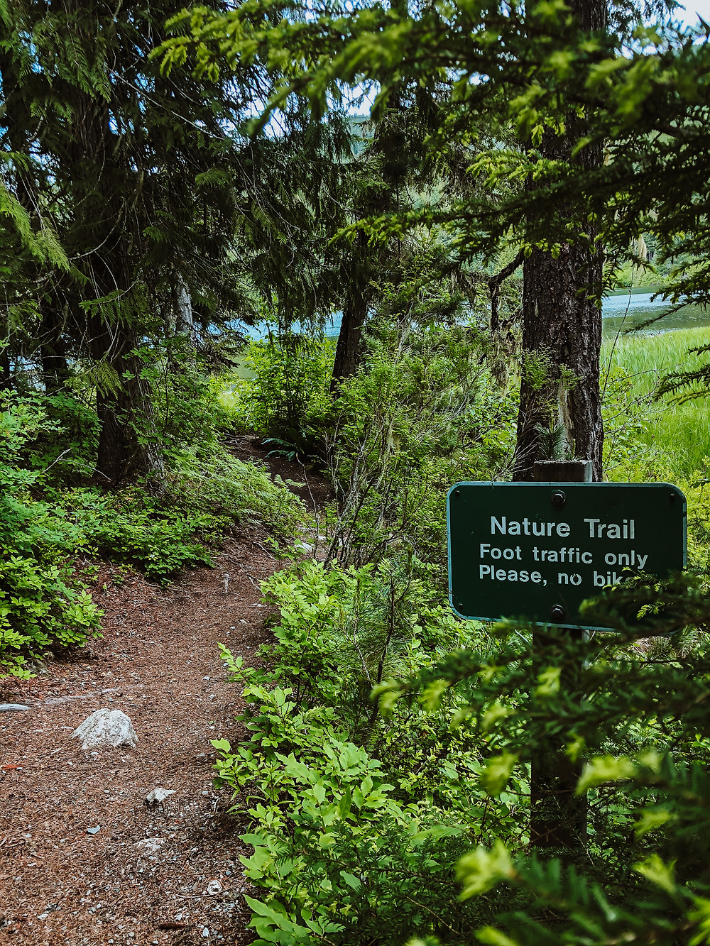 Nature Trails at Lost Lake
