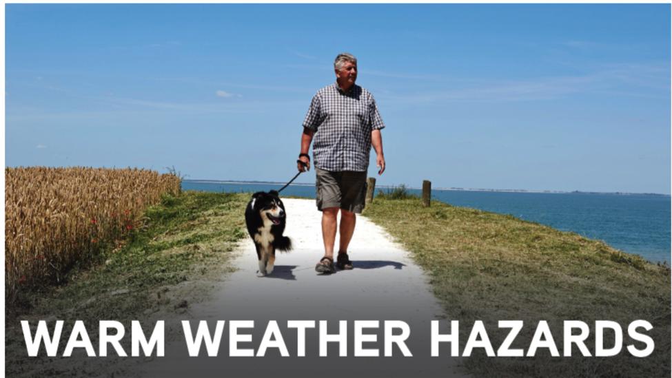 warm weather hazards