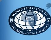 """Конференция """"Спорт и нейротравма"""". Курсы Всемирной федерации нейрохирургических обществ."""