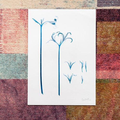 Lilium (Safir) Artwork