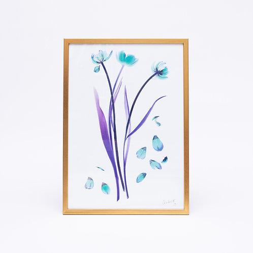 Tulipa (Diamond)