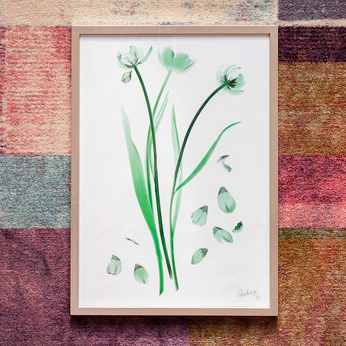 Tulipa (Emerald) Framed Artwork