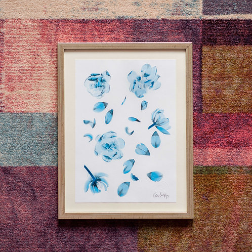 Tulipa pattern (Safir) Framed Artwork