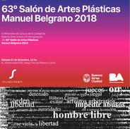 63 Salón de artes visuales M. Belgrano.