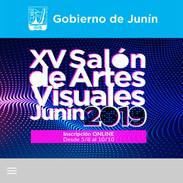 XV Salón de artes visuales Junín 2019.