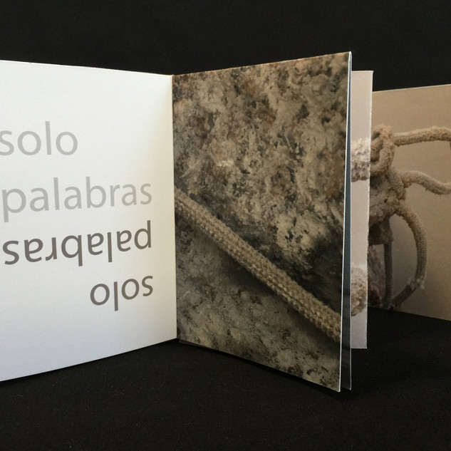 Irreversible. Libro de artista. Pequeño formato. Detalle.