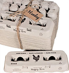 Henlay Vintage Egg Cartons.jpg