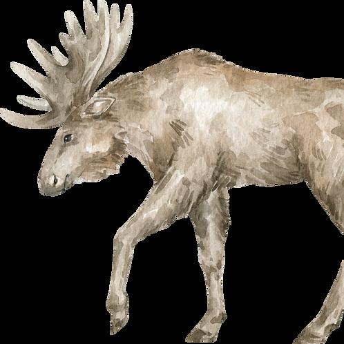 Moose Watercolor Animal Printable