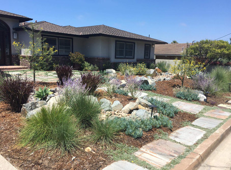 The 8 Principles of Successful Home Water Harvesting