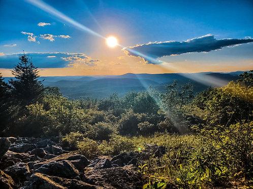 Wilderness Sun