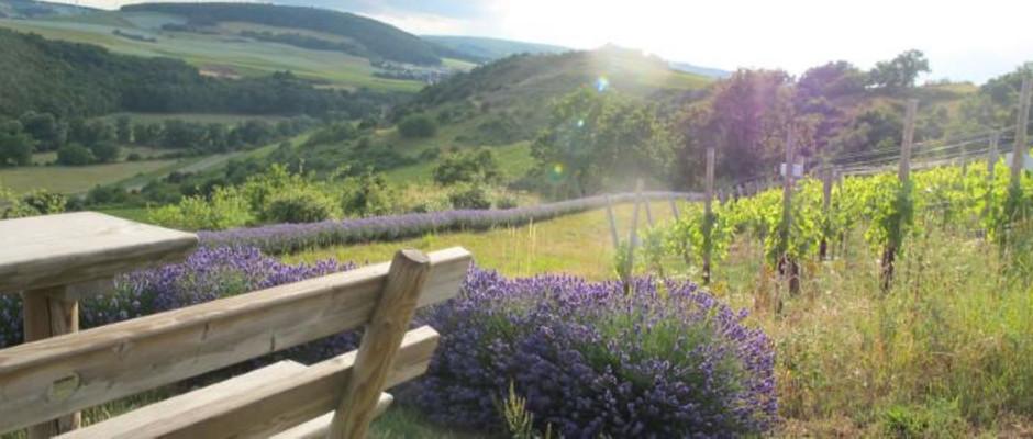 Lavendeleck Top Lage Heerkretz