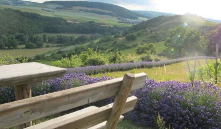 Lavendeleck 3_web