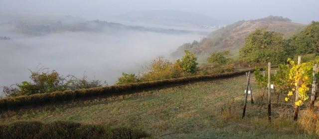 Herbstimpression - Heerkretz