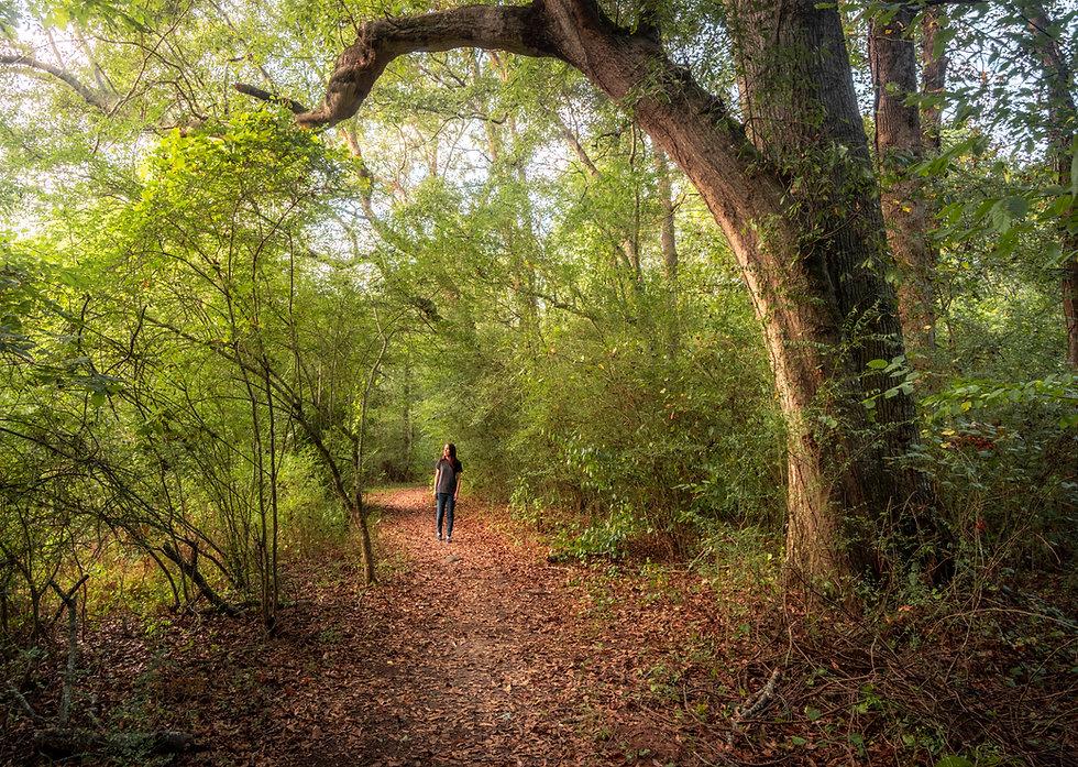 Mulberry-Riverwalk-DSC09123-HDR-Pano.jpg