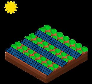 Luzentum - Agrovoltaica. Cultivo solar combinado con cultivo tradicional. Agrovoltaica. Bombeo de agua.