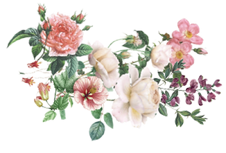 FLOWERS copy2.png
