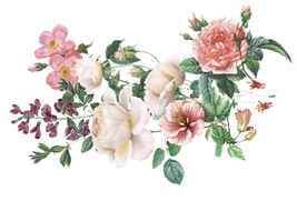 FLOWERS copy.png