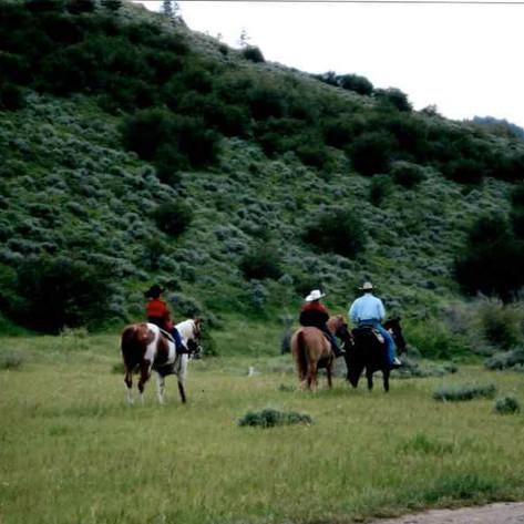 Saddlery 2.jpg