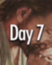 Day 7 button.jpg