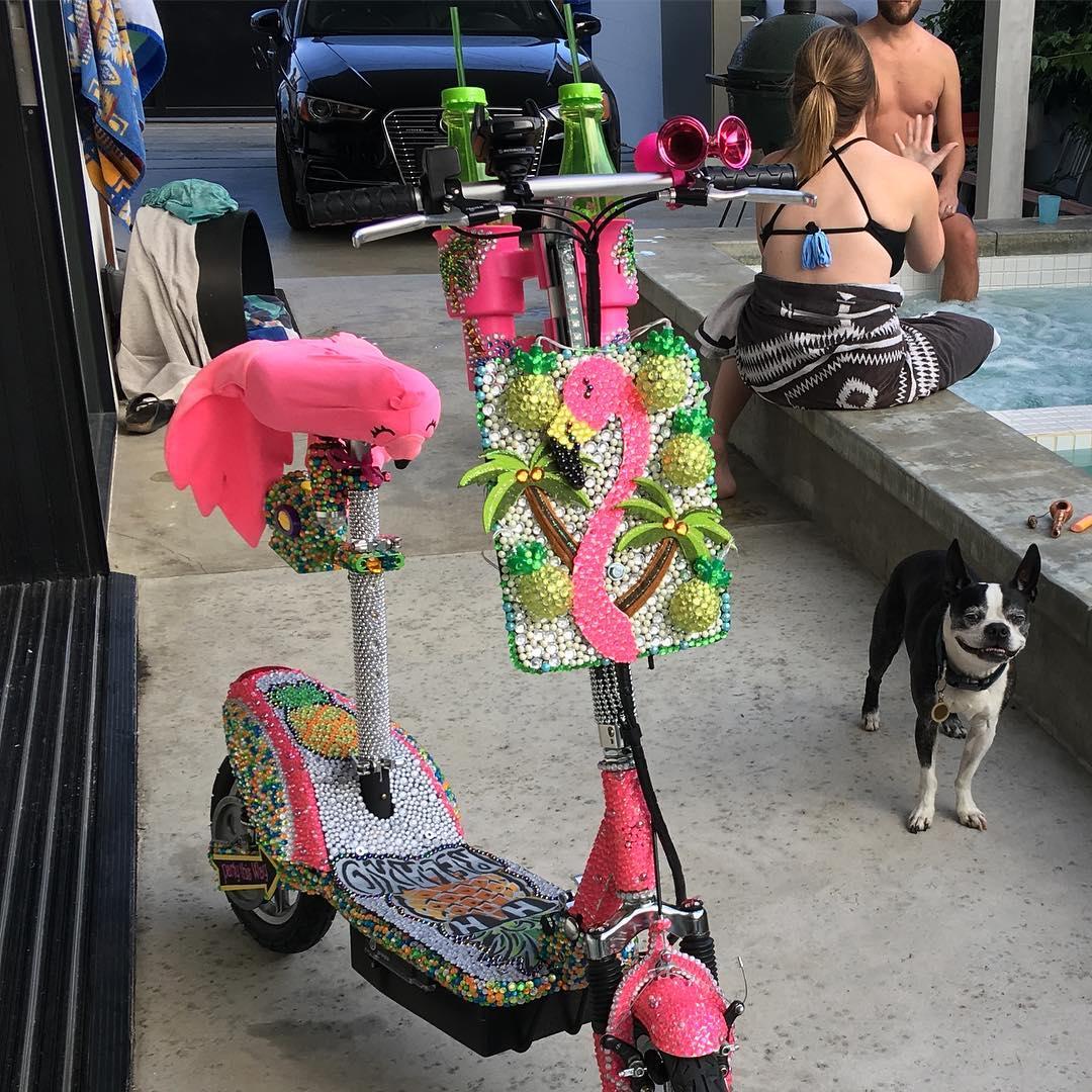 Venice Flamingo