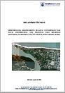capa_relatório.png