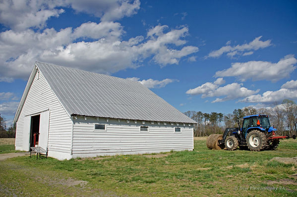Aspen Grove Blue Tractor © Dew Photograp