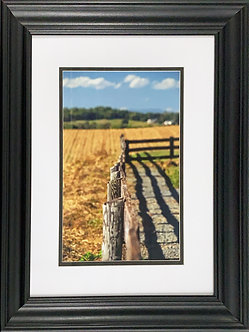 Country Fence (20x16 Framed)