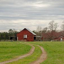 March 2020 Spotsylvania County Barns-327