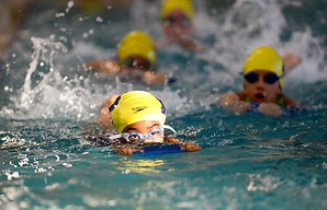 Y Swimmers